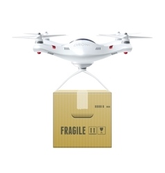 Unmanned Drone With Box vector image