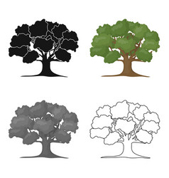 Oak icon in cartoon style for web vector