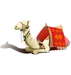Saddled camel resting vector