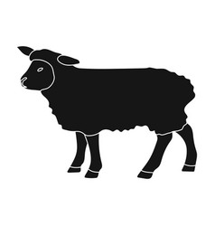 Sheep icon in black style isolated on white vector