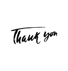 Thank You handwritten inscription Hand drawn vector image