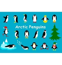 Set of cute Christmas character - penguin vector image