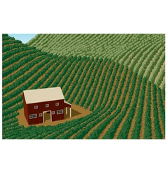 Barn and Field vector image vector image