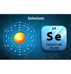 Flashcard of selenium atom vector image