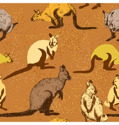 Seamless pattern with kangaroo vector image vector image
