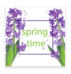 Spring flowers purple hyacinths vector