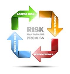Diagram of risk managment vector