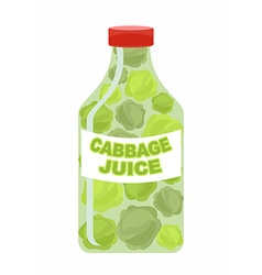 Cabbage juice juice from fresh vegetables cabbage vector