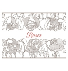 Decorative floral border with roses vector