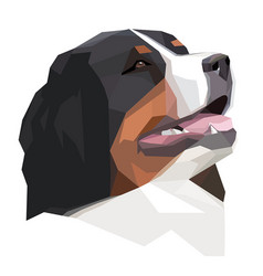Head bernese mountain dog in the geometric style vector