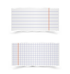 Sheets of school notebooks vector image vector image