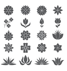 stylized plants and flowers for different design vector image vector image