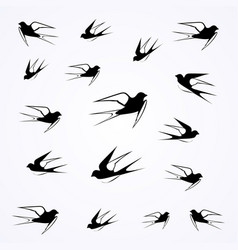 Swallows fly in the sky vector
