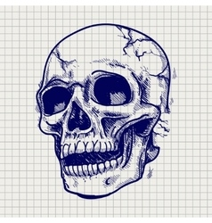 Hand drawn skull sketch vector image