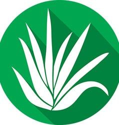 Aloe Vera Plant Icon vector image