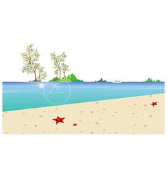 Beach coast background vector