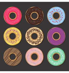 Collection of various glazed donuts vector