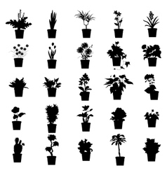 Potted plants silhouettes set vector image
