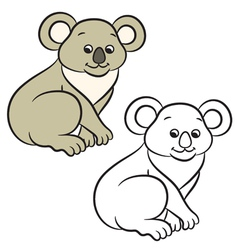 Koala coloring book vector
