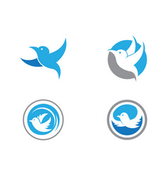 Bird logo template vector