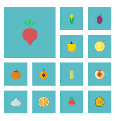 Flat icons peach gourd bulgarian bell and other vector