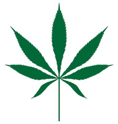 Cannabis leaf3 resize vector