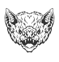 Angry head vampire bat vector