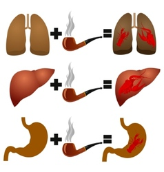 Disease from smoking vector image vector image