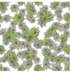 Seamless texture marijuana six vector
