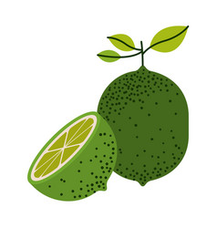 White background with one lemon fruit and half vector
