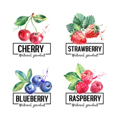 Eco food labels set watercolor hand drawn sketch vector