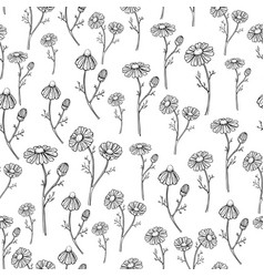 Chamomile drawing seamless pattern vector