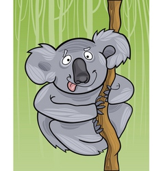 Cartoon illustration of funny australian koala vector