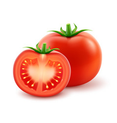 Ripe red tomato close up isolated on background vector