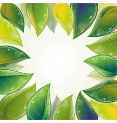 spring leaves frame vector image