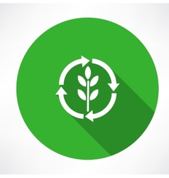 Eco green leaf logo vector