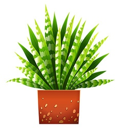 A houseplant with a pot vector