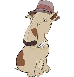 Dog in a hat vector