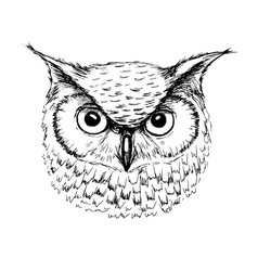 sketch of owl head ballpoint pen vector image