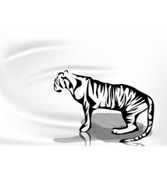 Tiger and water vector
