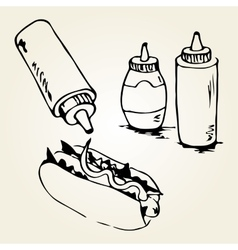 Hot Dog Hand Drawn vector image