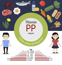 Vitamin pp infographic vector