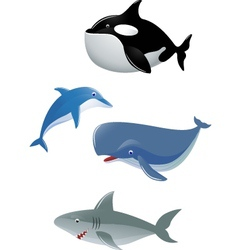sea animal collection vector image