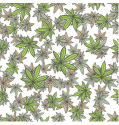 seamless texture marijuana three vector image vector image