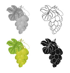 bunch of yellow grapes icon in cartoon style vector image
