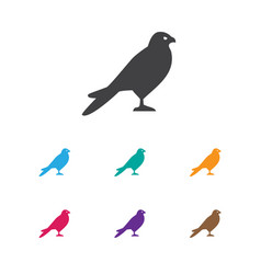 of animal symbol on hawk icon vector image