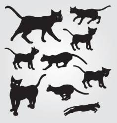 Domestic cats vector