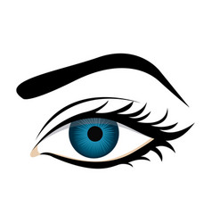 Color silhouette with female eye and eyebrow vector