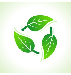 Green leaves make a recycle icon vector image
