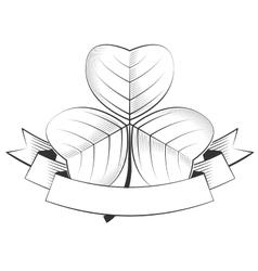 shamrock vector image